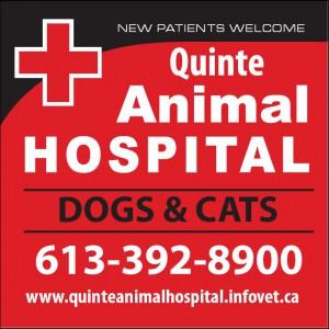 Quinte Animal Hospital